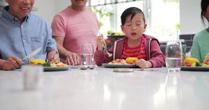 Little boy Enjoying his Stir Fry Dinner. Little boy is enjoying a stir fry dinner while with his family at home. He is eating a piecce of chicken from his plate stock video