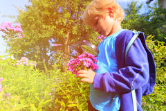 Little boy exploring flowers in the garden with magnifying glass Stock Photography