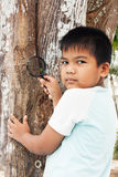 Little boy exploring tree with a magnifying glass Royalty Free Stock Image
