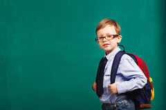 little Boy in eyeglasses with big backpack Royalty Free Stock Photography