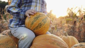A little boy farmer riding in a cart full of pumpkins at sunset. Close-up view: A little boy farmer riding in a cart full of pumpkins at sunset. Slow motion