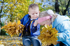 Little boy fascinated by crawling insect Royalty Free Stock Photography