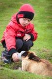 Little boy feed a rabbit Stock Photo