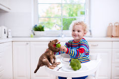 Little boy feeding broccoli to toy dinosaur Stock Photo