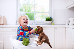 Little boy feeding broccoli to toy dinosaur Stock Images