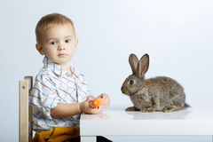 Little boy feeding rabbit with carrot Stock Photos