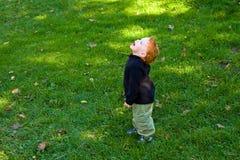 Little Boy felice Fotografia Stock