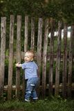 Little boy with fence outdoors Royalty Free Stock Images