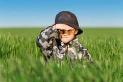 Little boy in field Stock Photos