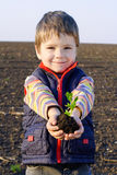 Little boy on field holding the plant Stock Images