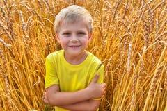 Little boy in field Royalty Free Stock Image