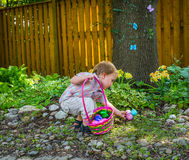 A Little Boy Finds Easter Eggs. An adorable little boy holding a basket full of colorful Easter eggs finds more eggs during an egg hunt in a beautiful garden in Royalty Free Stock Images