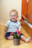 Little boy with flower Royalty Free Stock Images