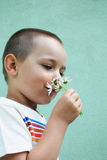 Little boy with flower Royalty Free Stock Image