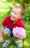 Little boy with flowers Stock Photo