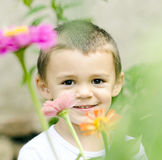 Little boy in flowers Stock Images