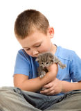 The little boy with a fluffy kitten Royalty Free Stock Photography