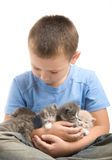 The little boy with a fluffy kittens Stock Photo