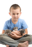The little boy with a fluffy kittens Royalty Free Stock Images