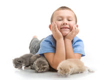 The little boy with a fluffy kittens Royalty Free Stock Photos