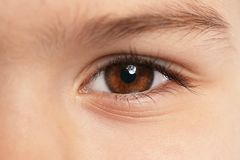 Little boy, focus on eye. Visiting children`s doctor. And ophthalmologist stock image