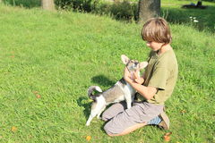 Little boy stroking a dog Stock Images