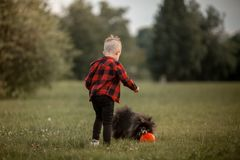 A little boy with a football with his dog Stock Image