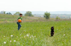 Little boy with football and his dog  outdoors Royalty Free Stock Photo