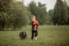 A little boy with a football with his dog Royalty Free Stock Photography