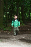 The little boy in the forest Royalty Free Stock Image