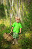 Little boy in the forest with basket Stock Photos