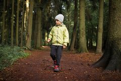 Little boy in forest park royalty free stock image