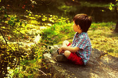 Little boy in a forrest Stock Image
