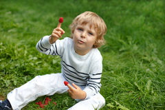 Little boy with fresh raspberries on organic self pick farm. Beautiful boy with raspberries on organic self pick farm in Germany Stock Images