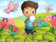 A little boy in the garden. Illustration of a litte boy with a magnifying glass in the garden Stock Image
