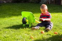 Little boy gardening Royalty Free Stock Photo