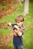 Little boy gardening outdoors Royalty Free Stock Photography