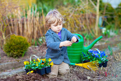 Little boy gardening and planting flowers in garden Royalty Free Stock Image