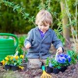 Little boy gardening and planting flowers in garden Stock Photo
