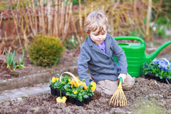 Little boy gardening and planting flowers in garden Stock Photos