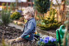 Little boy gardening and planting flowers in garden Royalty Free Stock Images