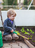 Little boy gardening and planting flowers in garden Royalty Free Stock Photos
