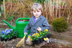 Little boy gardening and planting flowers in garden Royalty Free Stock Photography
