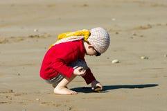 Little boy  gathering stones on the beach Stock Photography