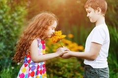 Little Boy gift flowers his friend girl. Stock Photos