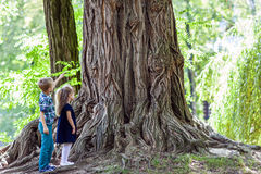Little boy and girl brother and sister standing beside a big stu Royalty Free Stock Image
