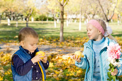 Little boy and girl eating apples Stock Photography