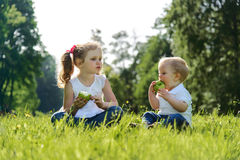 Little boy and girl eating apples on picnic in park Stock Photo