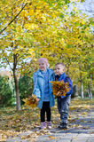 Little boy and girl gathering autumn leaves. Standing side by side in the park with handfuls of colourful yellow leaves on a paved footpath Stock Photos