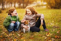 Little boy and girl with her puppy jack russell in autumn outdoors. royalty free stock photography